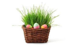 Osterkorb Gras