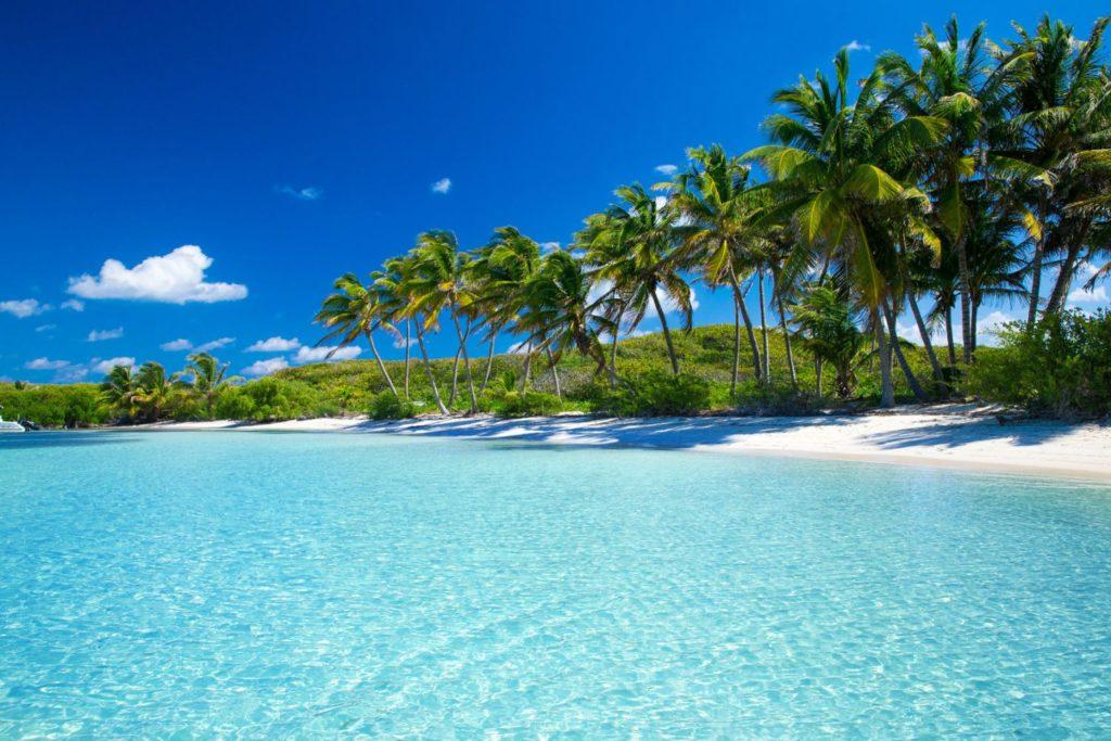 Saint Anne beach Martinique