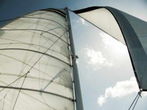 veleros o catamaranes