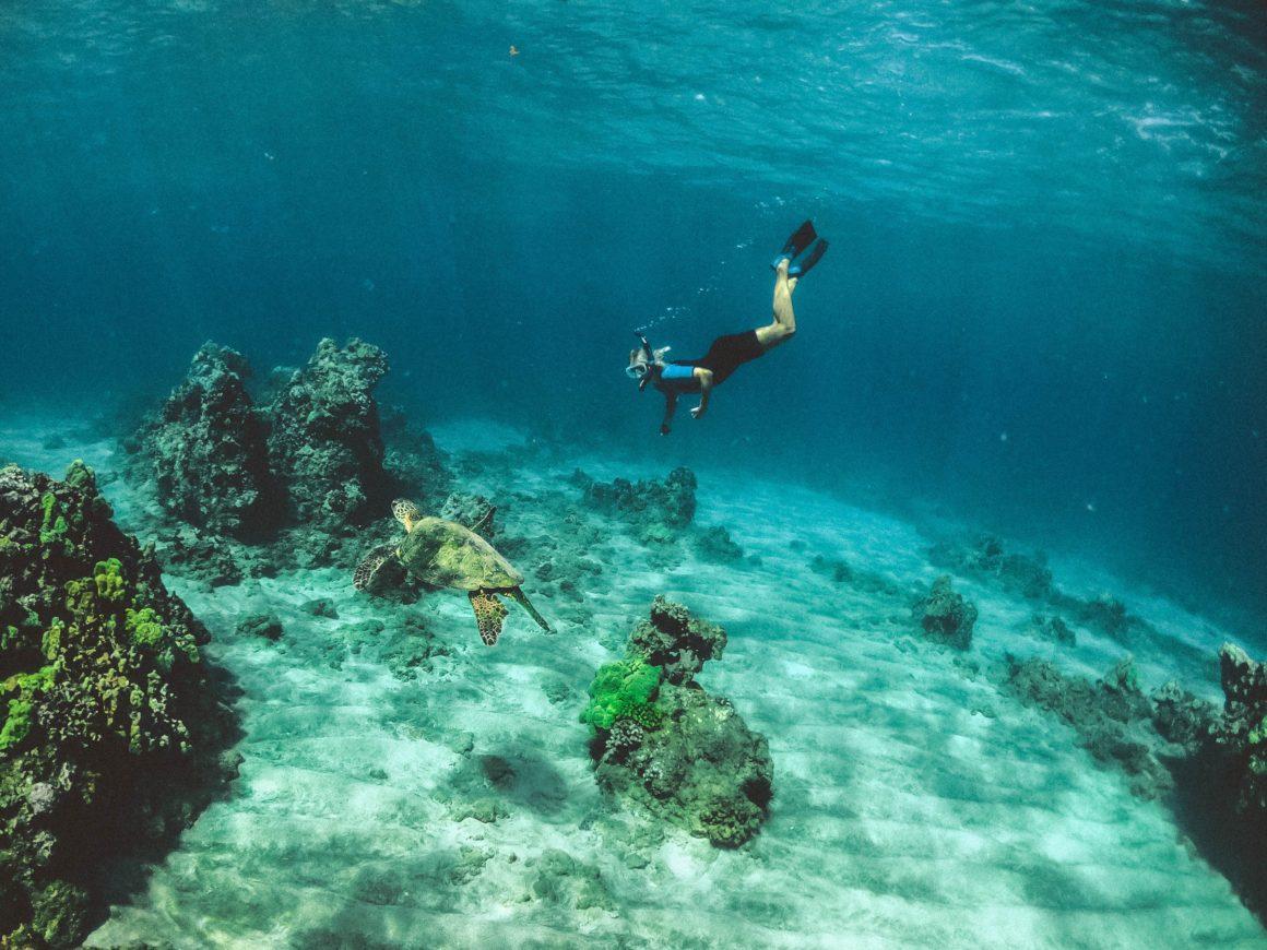 descubriendo los fondos marinos