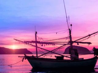 barche click and boat