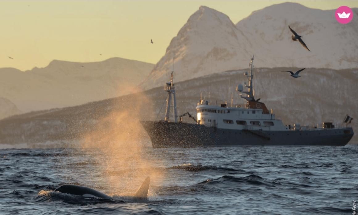 varen in noorwegen