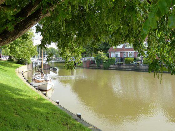 Bootje onder boom op kanaal