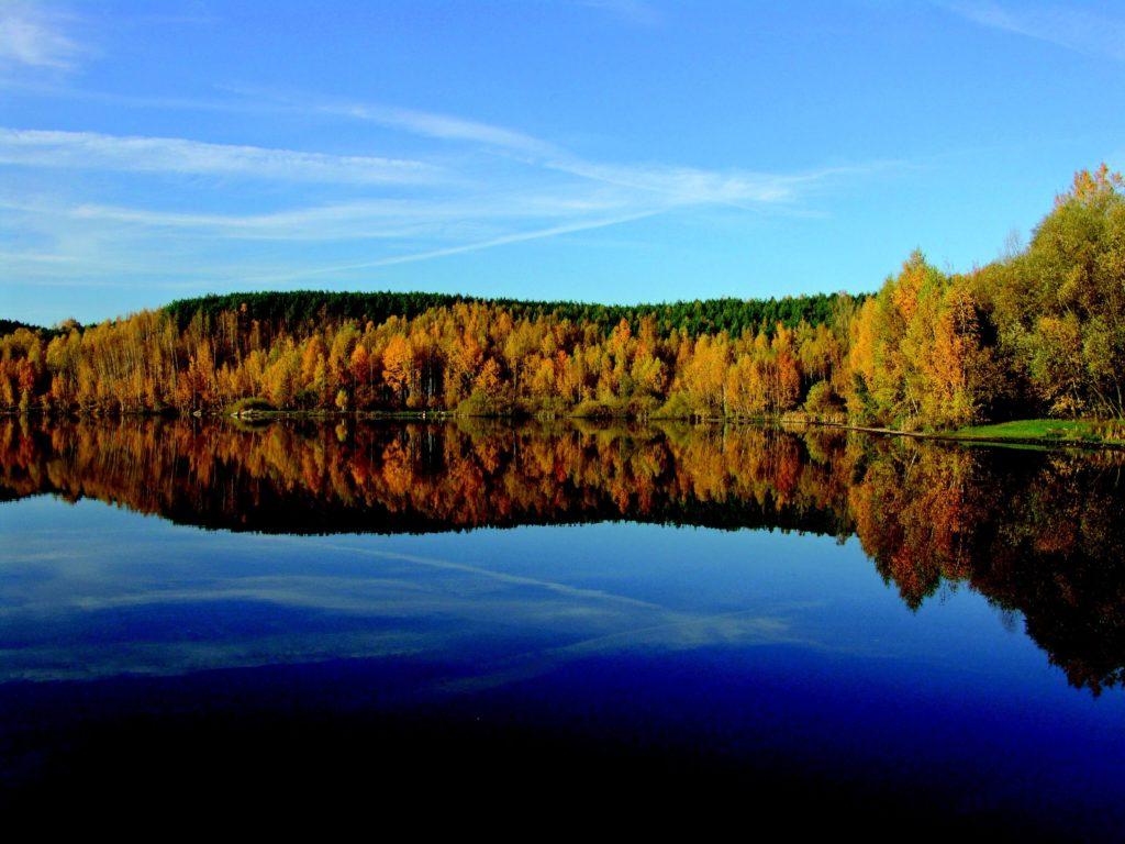 Kolorowe drzewa odbijające się w jeziorze