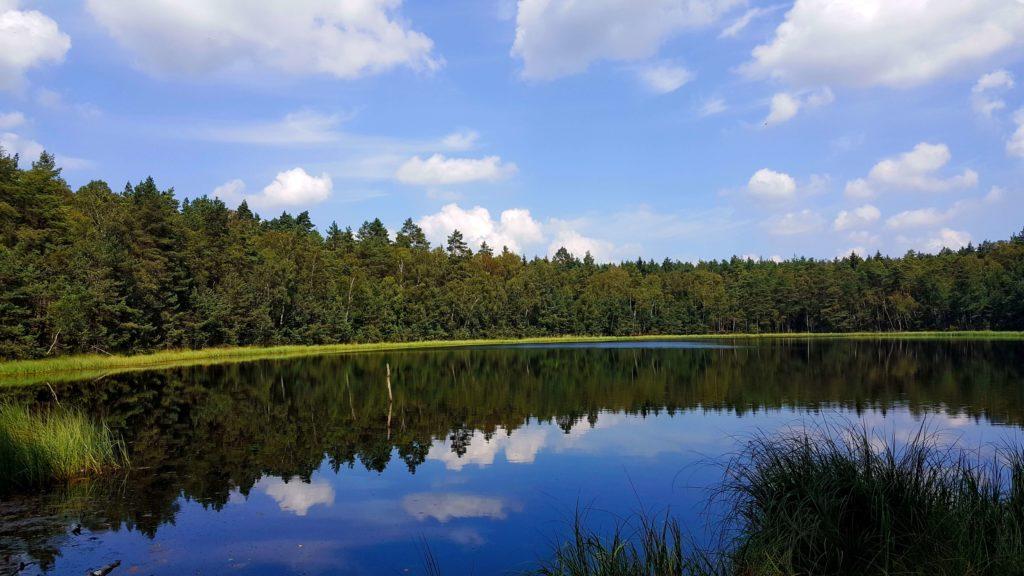 Jezioro Mazury natura
