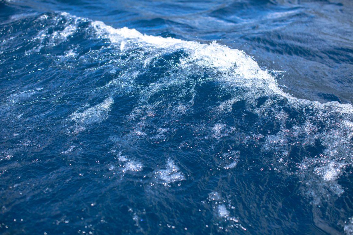 fale morze