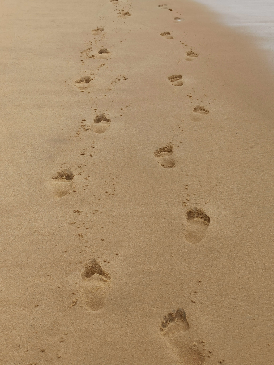 Não há forma melhor de conhecer as praias de Ubatuba do que a bordo de um barco