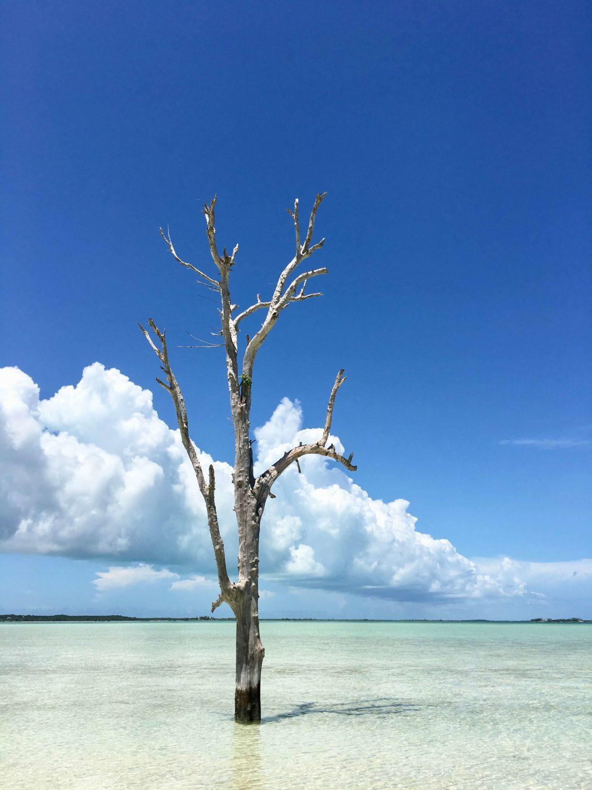 Descobrir o mar cristalino de Eleuthera é um dos programas mais emocionantes nas Bahamas