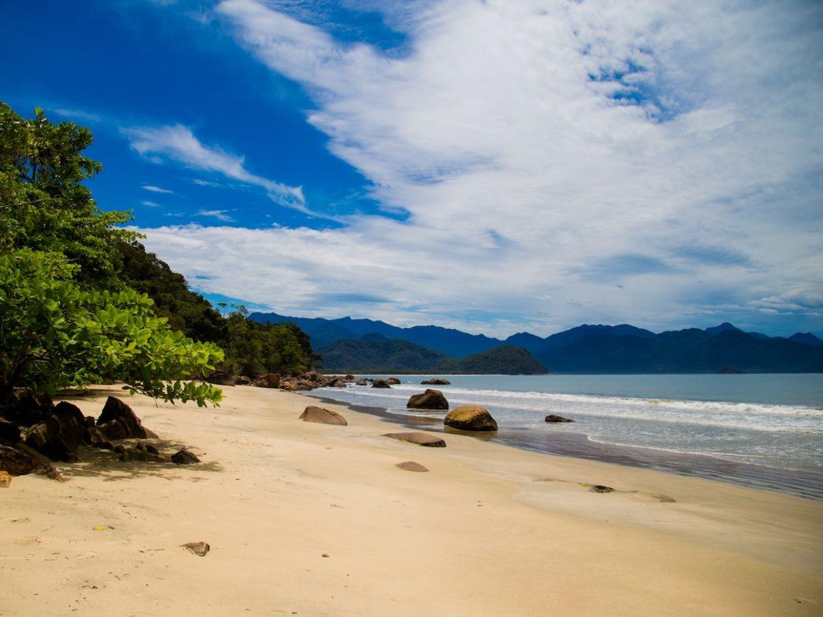 Praia com algumas plantas na lateral esquerda, areia amarelada, rochas pequenas perto das plantas e também próximas da água. O tom do mar é esverdeado e pequenas ondas quebram na orla.
