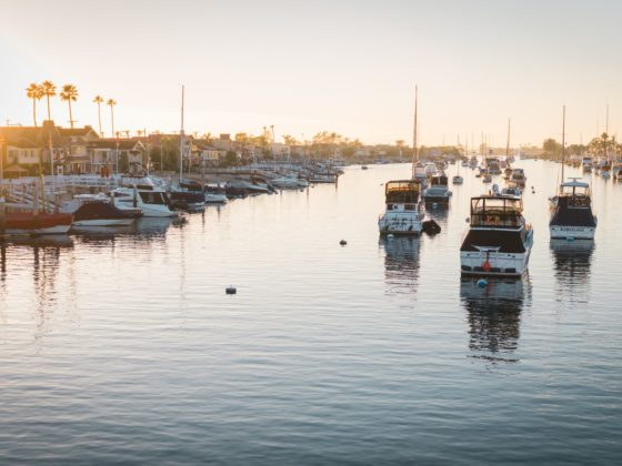 Boats in a Marina in Newport Beach