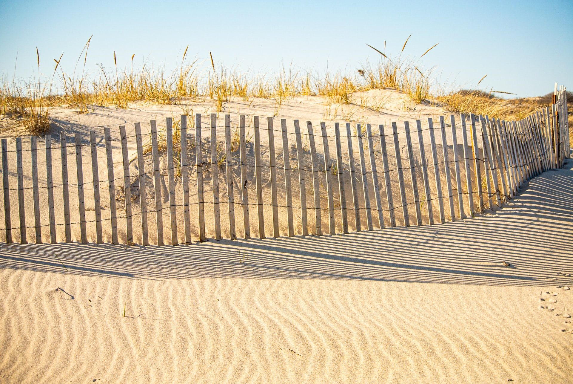 Sand on a beach in the hamptons