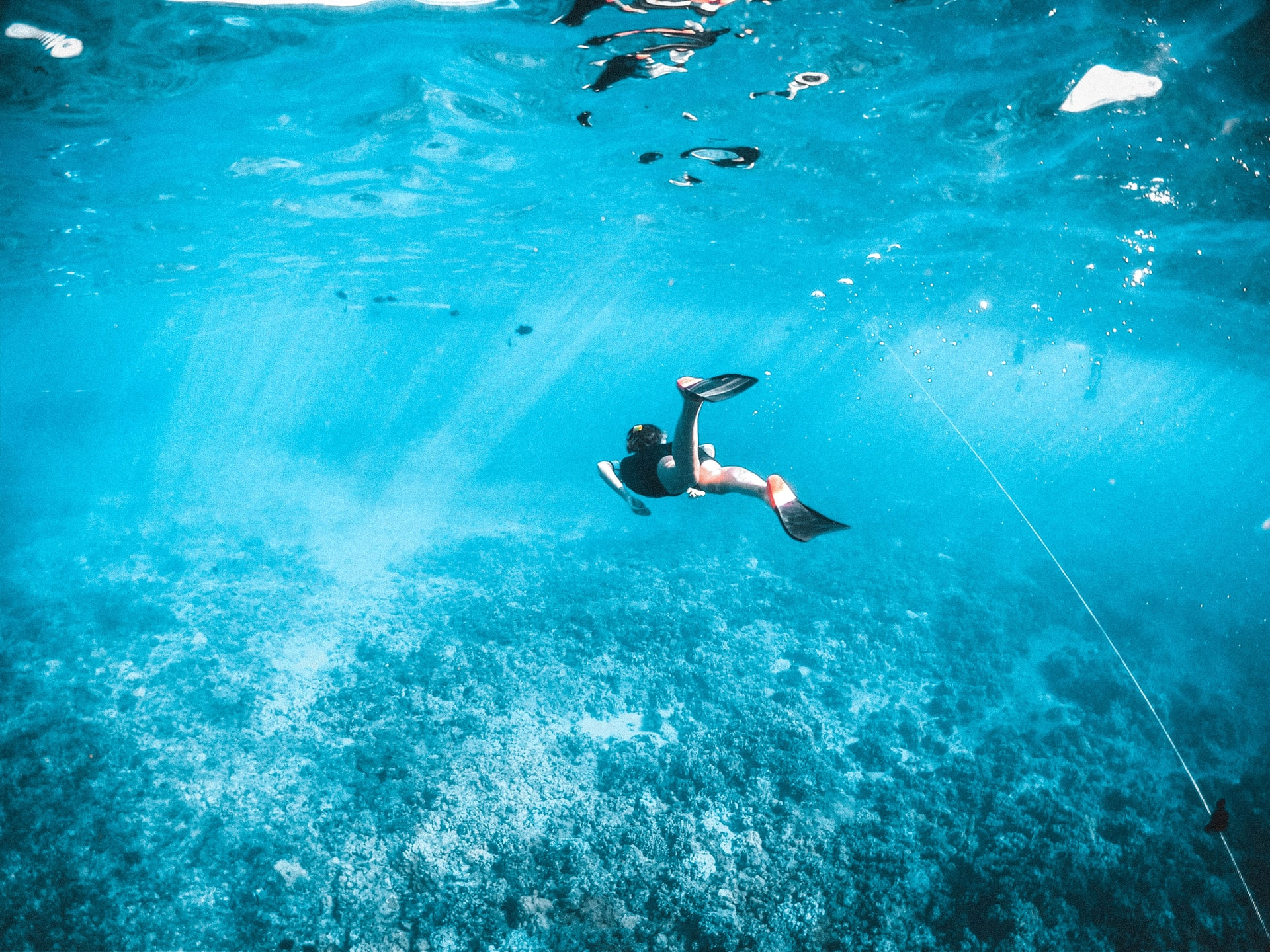 snorkeling in key largo, key largo snorkeling
