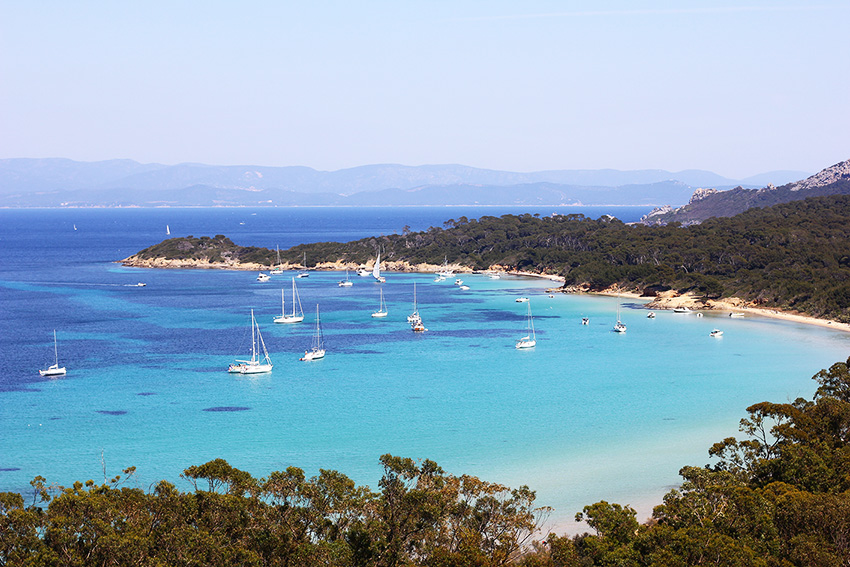 Image result for Porquerolles plage d'argent