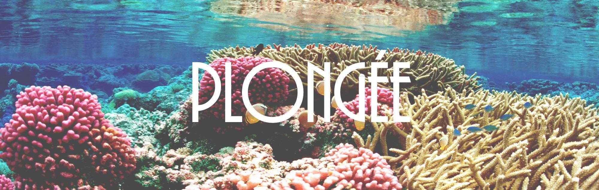 plongée_activités_nautiques