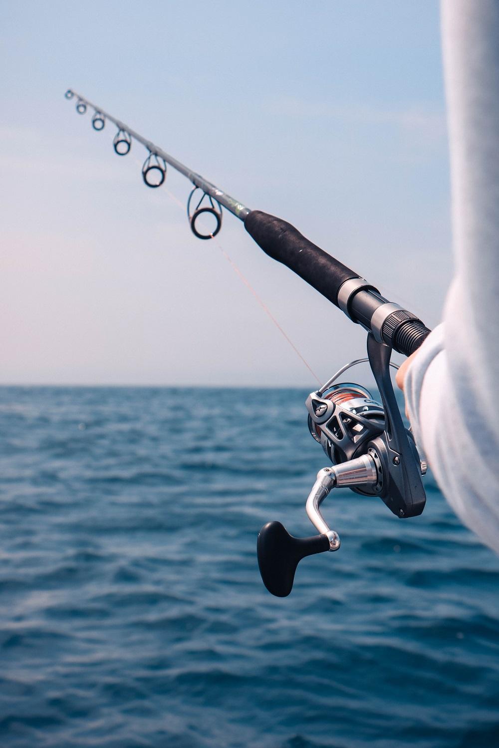 activité bateau pêche