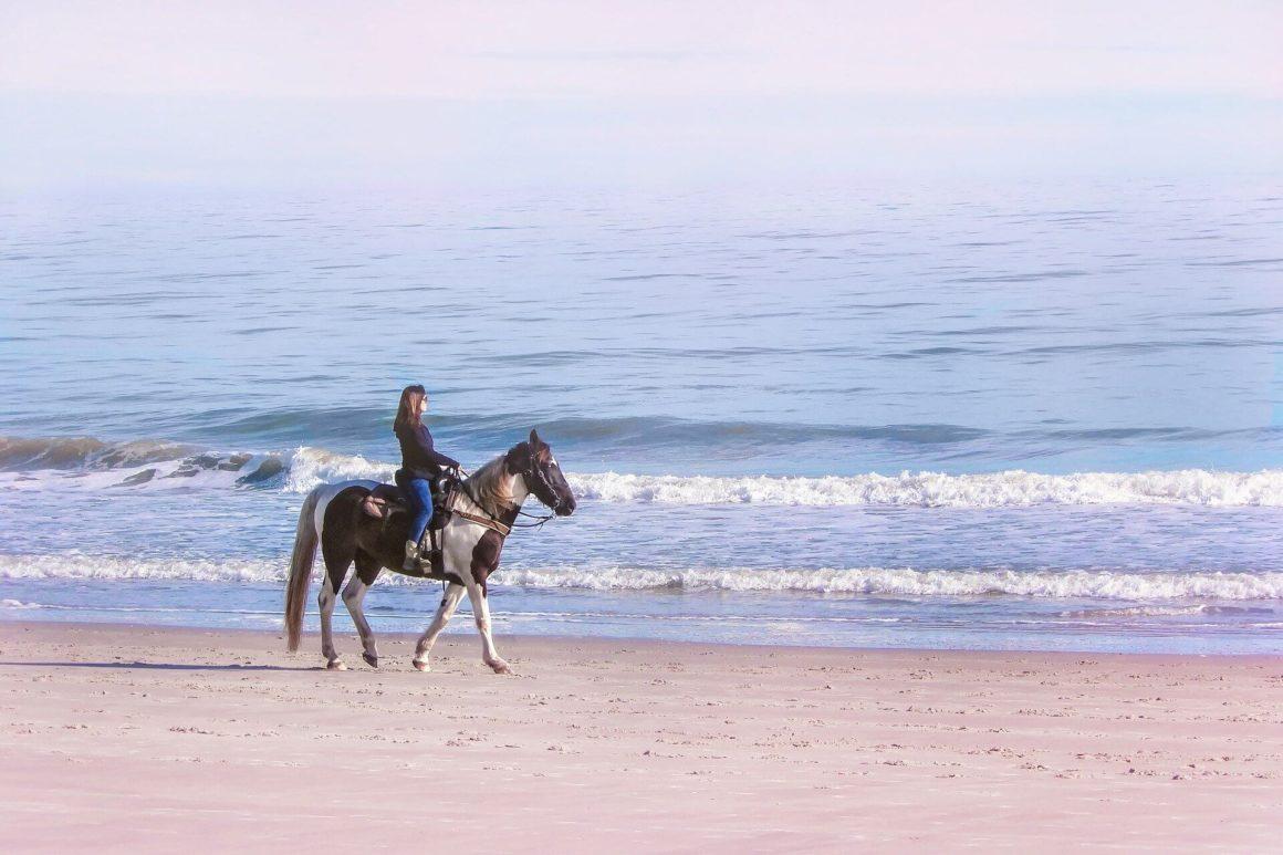 vacance de la Toussaint a cheval